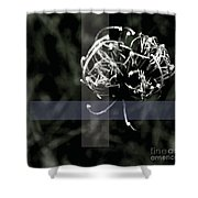 Bewhitched Shower Curtain