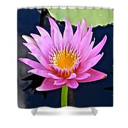 Beyond Beautiful Water Lily 2 Shower Curtain