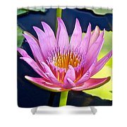 Beyond Beautiful Water Lily Shower Curtain