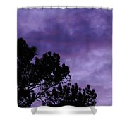 Beyond Dusk In The South Shower Curtain