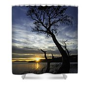 Beyond The Bay Shower Curtain