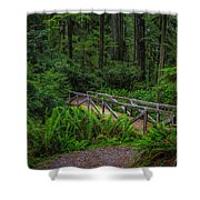 Beyond The Bridge Shower Curtain