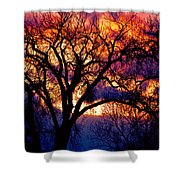 Beyond The Cottonwoods Shower Curtain