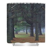 Beyond The Pines Shower Curtain