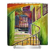 Beyond The Steps Shower Curtain