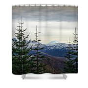 Beyond The Trees Shower Curtain