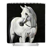 Bianco Su Nero Shower Curtain