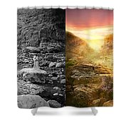 Bible - Psalm 23 - Yea, Though I Walk Through The Valley 1920 - Side By Side Shower Curtain