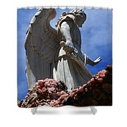 Big Angel Wings Shower Curtain