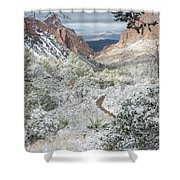 Big Bend Window With Snow Shower Curtain