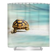 Big Big World Shower Curtain