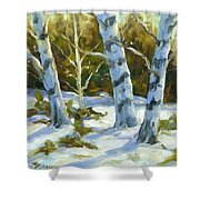 Big Birches In Winter Shower Curtain