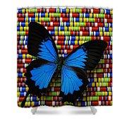Big Blue Butterfly Shower Curtain
