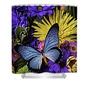 Big Blue Wings Shower Curtain