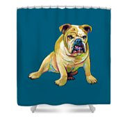Big Boy Shower Curtain