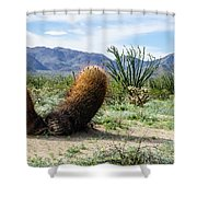 Big Budda Shower Curtain