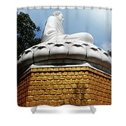 Big Buddha 1 Shower Curtain