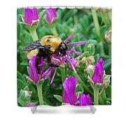 Big Bumblebee Shower Curtain