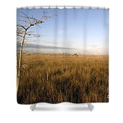Big Cypress Shower Curtain