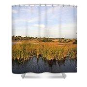 Big Cypress Landscape Number Six Shower Curtain