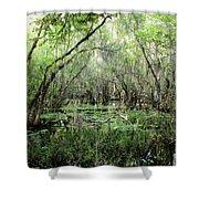 Big Cypress Preserve Shower Curtain