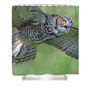 Big Eyes... Shower Curtain