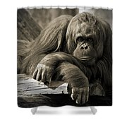 Big Hands II Shower Curtain
