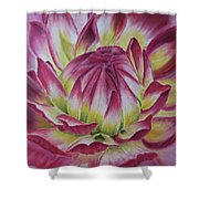 Big In Pink Shower Curtain