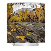 Big Lost Autumn Color Shower Curtain