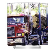 Big Mack Shower Curtain