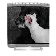 Big Mouth Pete Shower Curtain
