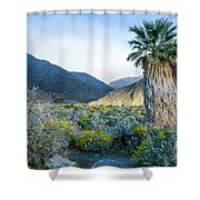 Big Palm Shower Curtain