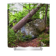 Big Rock Shower Curtain