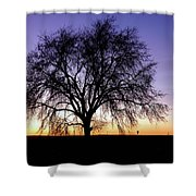 Big Sky - New Mexico Shower Curtain
