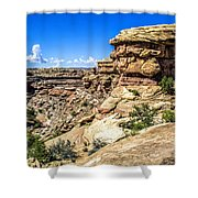 Big Spring Canyon Shower Curtain