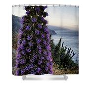 Big Sur Mornings Shower Curtain