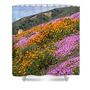 Big Sur Spring Shower Curtain