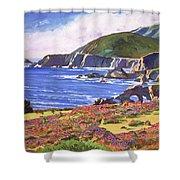 Big Sur Wildflowers - Plein Air Shower Curtain