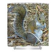 Big Tail Little Nut Shower Curtain