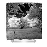 big tree in field IR Shower Curtain