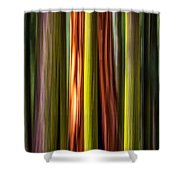 Big Trees Abstract Shower Curtain