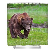 Big Ugly Grizzly Boar Claws Shower Curtain