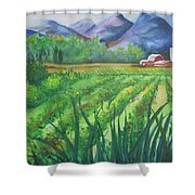 Big Valley Farm Shower Curtain