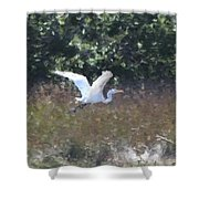Big White Bird Flying Away Shower Curtain