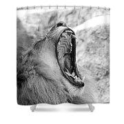 Big Yawn  Black And White Shower Curtain