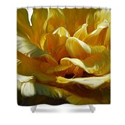 Big Yellow Rose Shower Curtain