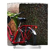 Bike Resting Shower Curtain