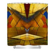 Bilateral Colors Shower Curtain
