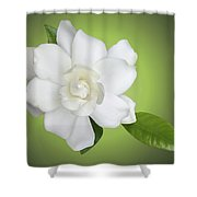 Billie's Flower Shower Curtain