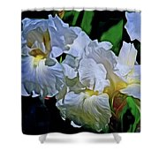 Billowing White Irises Shower Curtain